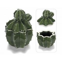 Barattolo Cactus